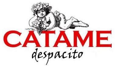 logo_catame